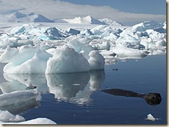 Cool down ... ice is expanding in much of the Antarctic, experts say / Reuters